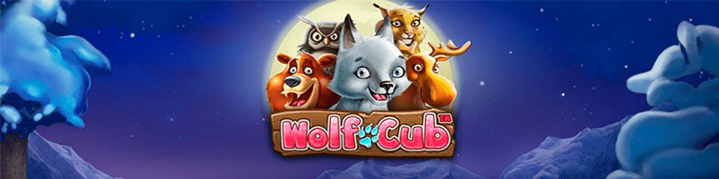 50 bonus spins on Wolf Cub from PlayFrank - view