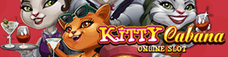 Play Kitty Cabana WIN 100 USD - view