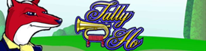 Play Tally Ho and WIN 100 - view