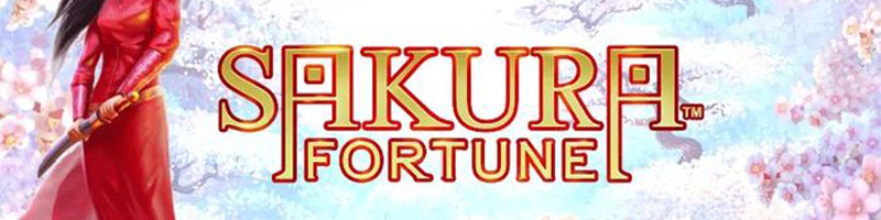 50 Free Spins on Sakura Fortune this Wednesday Black Friday Daily Deal